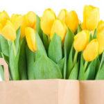 Как сделать тюльпаны своими руками: мастер классы в различных техниках