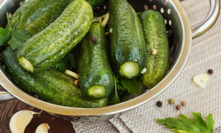 Малосольные огурцы в пакете: вкусные и простые рецепты malosolnye ogurcy 10