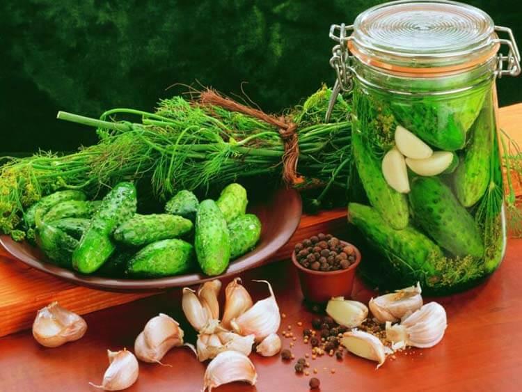 Малосольные огурцы в банке: проверенные вкусные рецепты malosolnye ogurcy 3 1