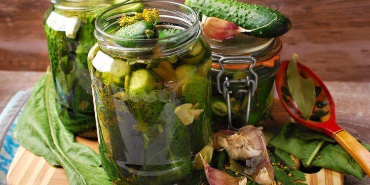 Малосольные огурцы в банке: проверенные вкусные рецепты malosolnye ogurcy 7 1