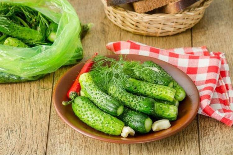 Малосольные огурцы в пакете: вкусные и простые рецепты malosolnye ogurcy 9