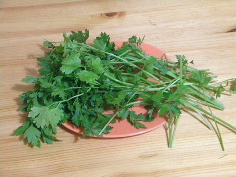 Малосольные огурцы в кастрюле: быстрые и вкусные рецепты malosolnye ogurcy v kastryule 12