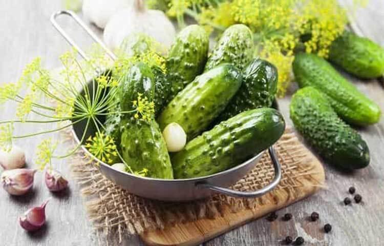 Малосольные огурцы в кастрюле: быстрые и вкусные рецепты malosolnye ogurcy v kastryule 4
