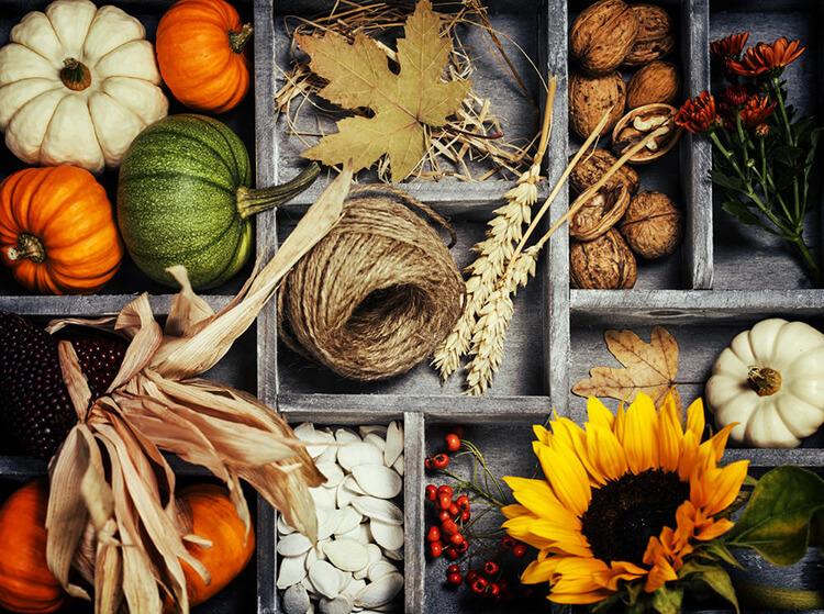 Интересные идеи на тему Осень в детский сад и школу osen idei dlya podelok 1
