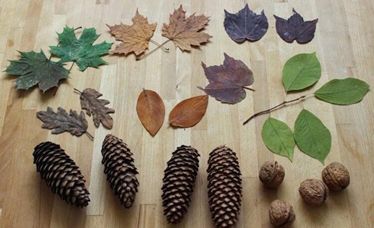 Красивые поделки из шишек на тему Осень для сада и школы podelki iz shishek svoimi rukami 31