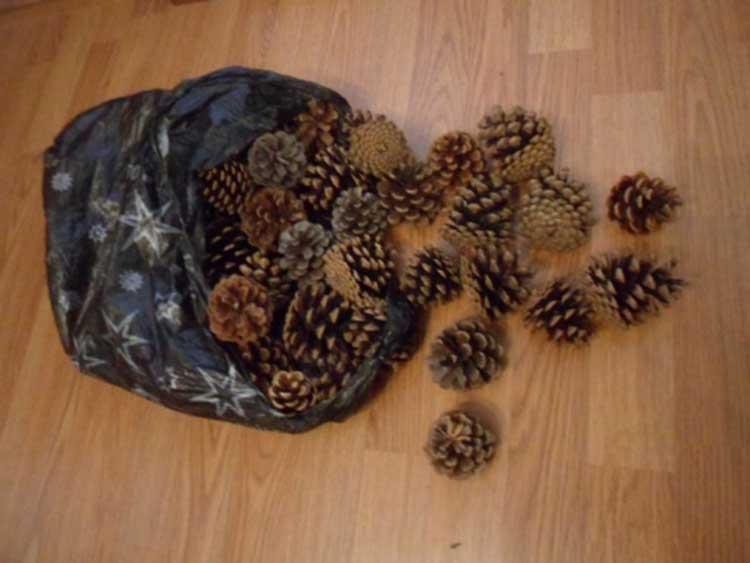 Красивые поделки из сосновых шишек для дома и садика podelki iz sosnovyh shishek 16