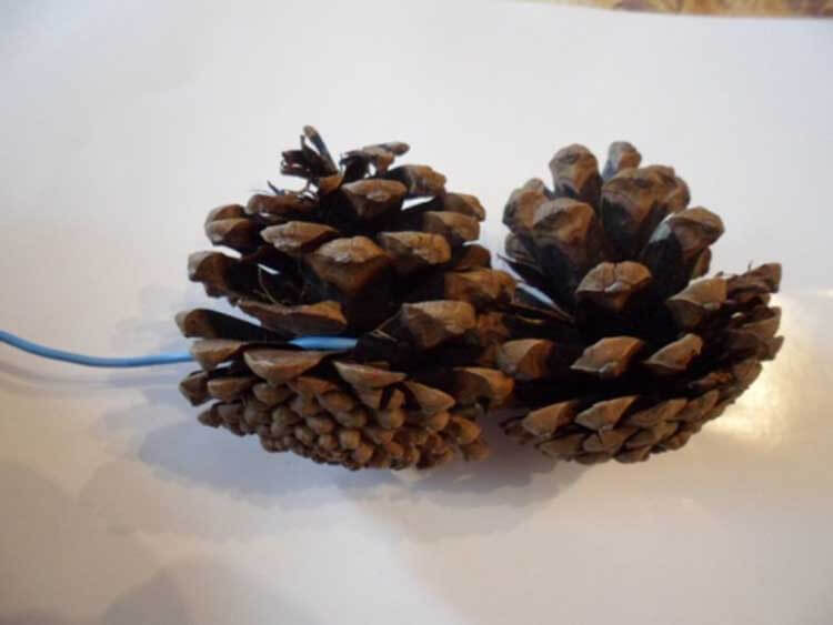 Красивые поделки из сосновых шишек для дома и садика podelki iz sosnovyh shishek 19
