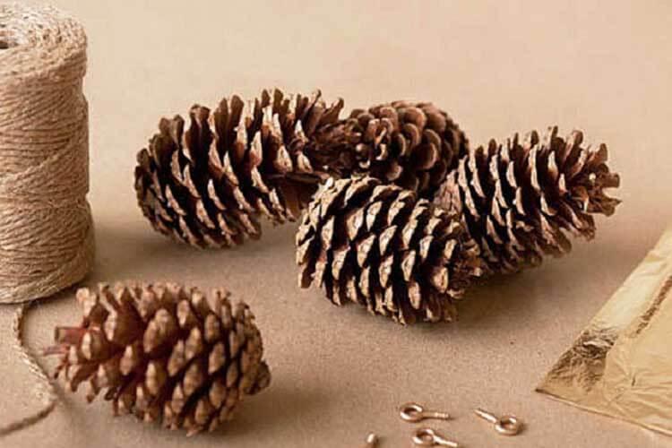 Красивые поделки из сосновых шишек для дома и садика podelki iz sosnovyh shishek 2