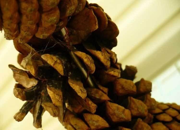 Красивые поделки из сосновых шишек для дома и садика podelki iz sosnovyh shishek 22