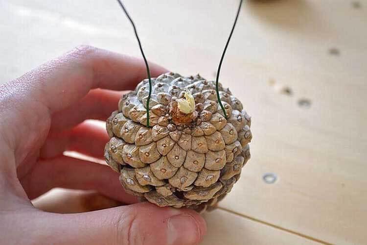 Красивые поделки из сосновых шишек для дома и садика podelki iz sosnovyh shishek 33