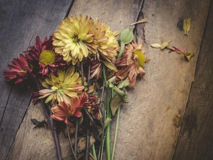 Что можно сделать из сухих осенних листьев: варианты с фото podelki s detkami iz suhih list ev 10