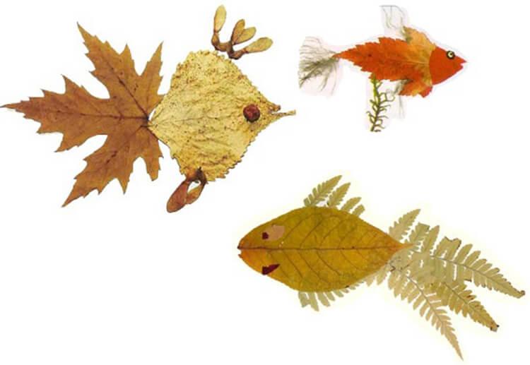 Что можно сделать из сухих осенних листьев: варианты с фото podelki s detkami iz suhih list ev 9
