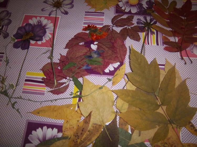 Аппликации из листьев на тему Осень: интересные поделки с фото applikacii iz listev 58