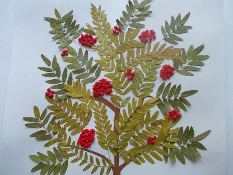 Интересные и красивые поделки из осенних листьев в садик и школу osennie podelki iz listev 108