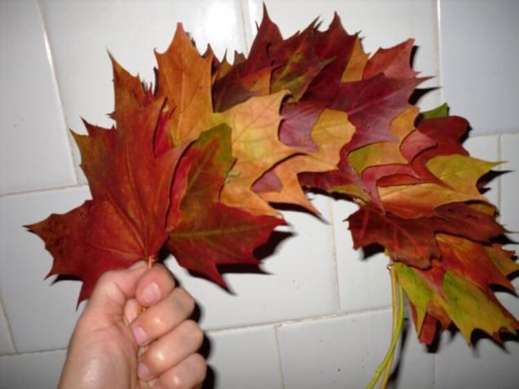 Интересные и красивые поделки из осенних листьев в садик и школу osennie podelki iz listev 21