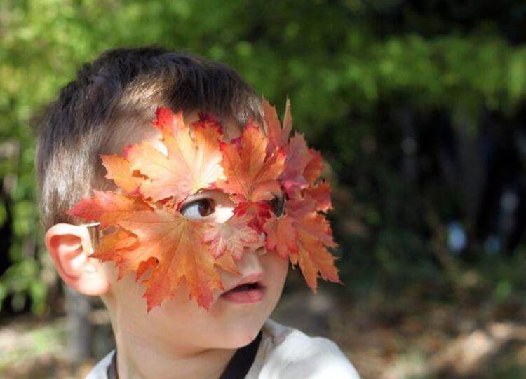 Интересные и красивые поделки из осенних листьев в садик и школу osennie podelki iz listev 25