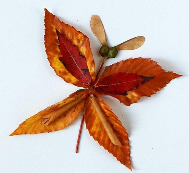 Интересные и красивые поделки из осенних листьев в садик и школу osennie podelki iz listev 97