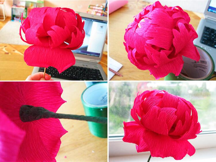 Пион своими руками: как сделать цветок различными способами 71 74