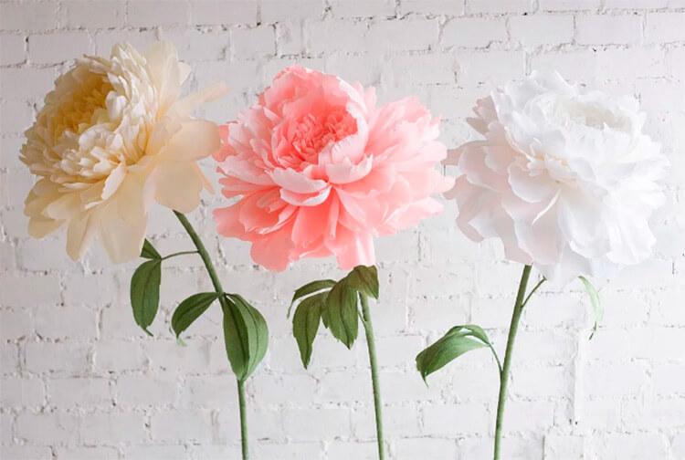 Пион своими руками: как сделать цветок различными способами kak sdelat piony svoimi rukami 1
