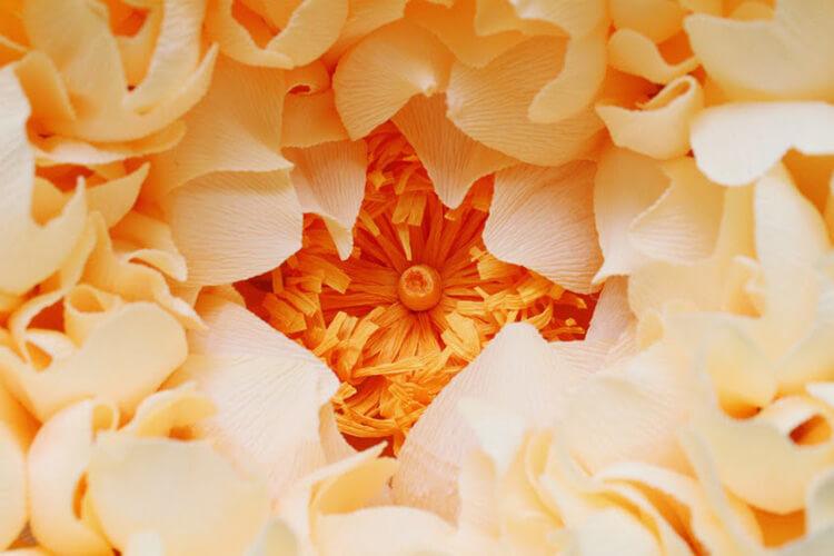 Пион своими руками: как сделать цветок различными способами kak sdelat piony svoimi rukami 174