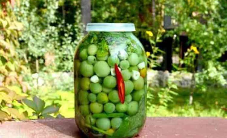 Как приготовить зеленые помидоры на зиму: рецепты пальчики оближешь recept zelenyh pomidor na zimu 16