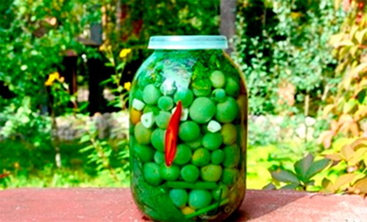 Как приготовить зеленые помидоры на зиму: рецепты пальчики оближешь recept zelenyh pomidor na zimu 24