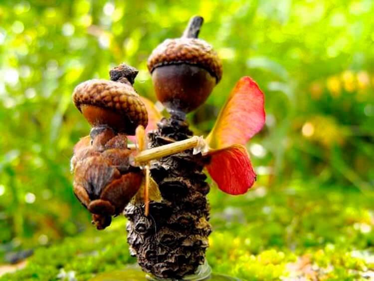 Детские поделки на тему Осень из желудей для школы и садика detskie podelki svoimi rukami iz zheludej 59