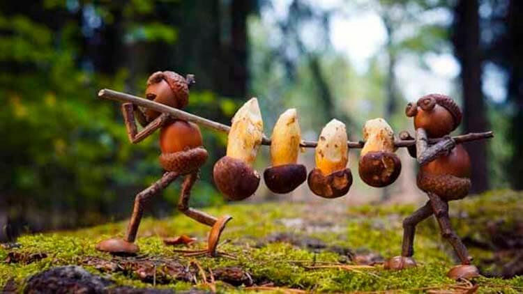 Детские поделки на тему Осень из желудей для школы и садика detskie podelki svoimi rukami iz zheludej 81