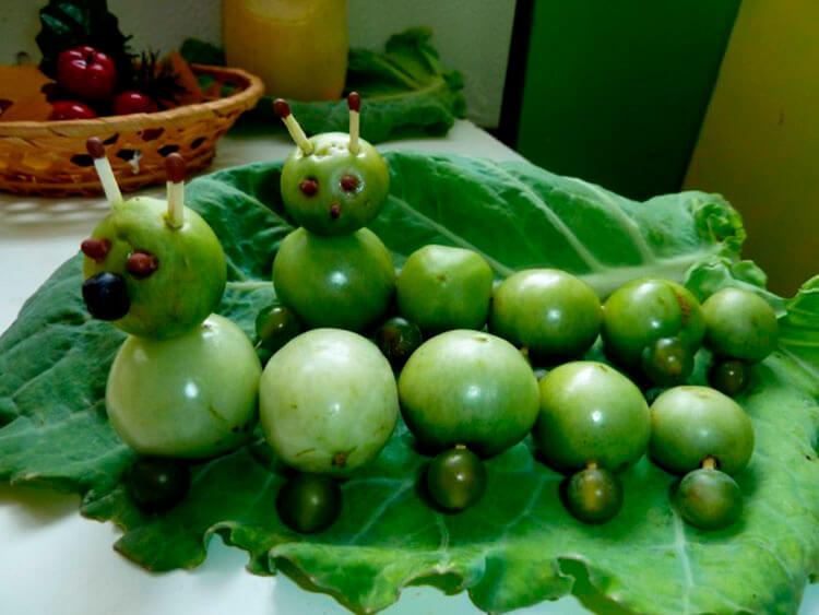 Гусеница из природного материала — различные варианты поделки с фото и описанием podelka gusenica iz prirodnogo materiala 22