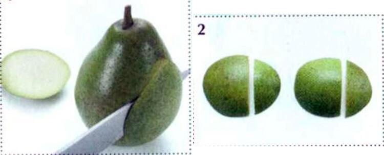 Животные из овощей и фруктов для сада и школы своими руками 20 21 1