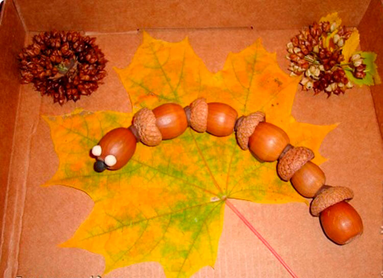 Гусеница из природного материала — различные варианты поделки с фото и описанием podelka gusenica iz prirodnogo materiala 30