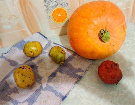 Животные из овощей и фруктов для сада и школы своими руками podelki zhivotnyh iz prirodnogo materiala svoimi rukami 134