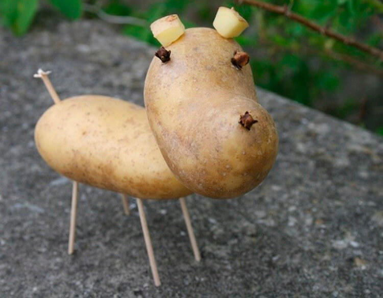 Поделки из картошки для сада и школы своими руками svoimi rukami podelki iz kartoshki 10